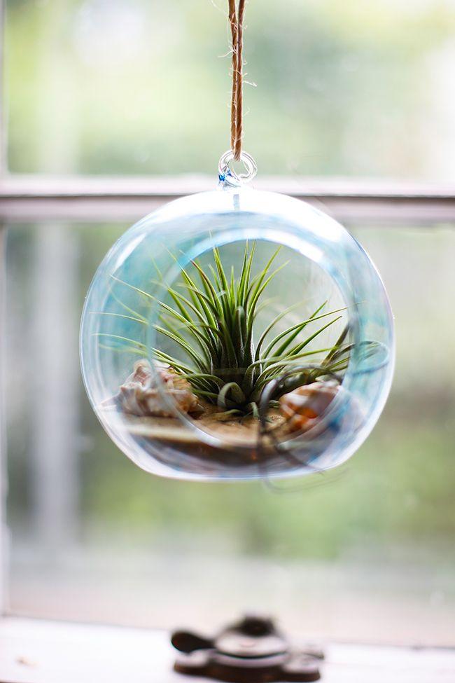 20 Creative Diy Terrarium Ideas And Projects I Creative