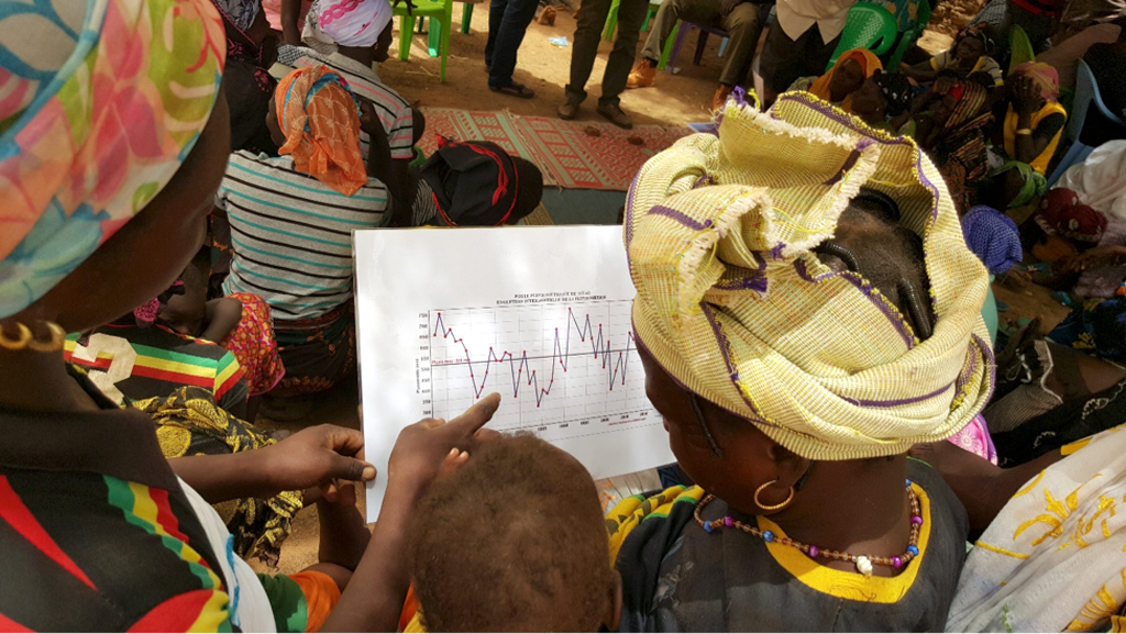 Women farmers interpreting a historical time series on seasonal rainfall totals at Tibtenga, Burkina Faso.