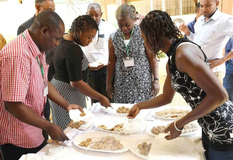 Members trying out food products based on pearl millet and sorghum. Photo: A Diama, ICRISAT