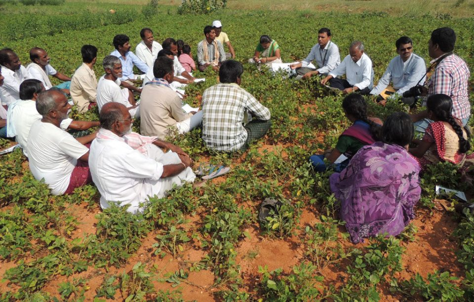 Educating farmers on the benefits of following good agricultural practices in groundnut cultivation.