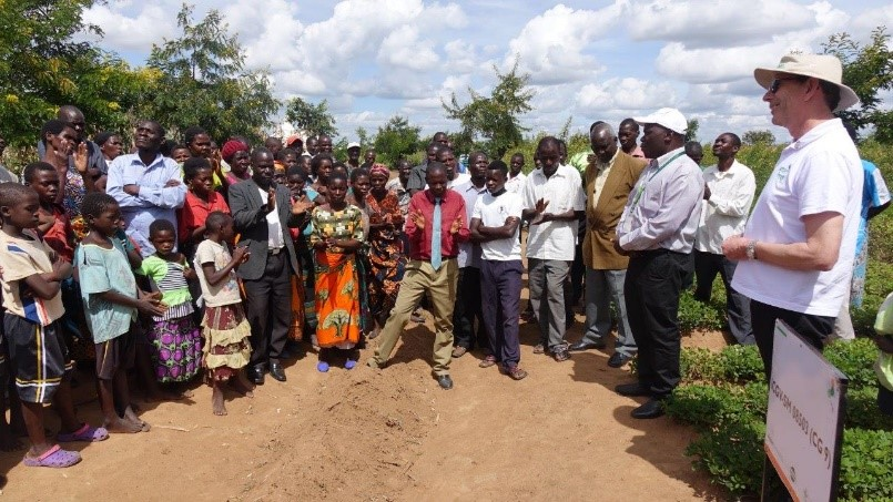 Dr Nigel Kerby, ICRISAT Governing Board Chair, with farmers and scientists in Malawi groundnut and pigeon pea intercropped fields. Photo: J Kane-Potaka, ICRISAT