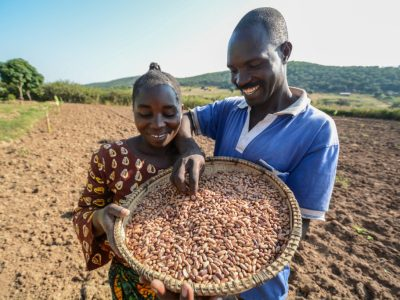 Tanzanian farmers with an improved bean variety. Photo: G.Smith/CIAT