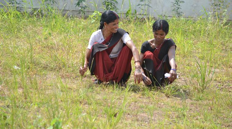 Kodo and Kutki millets are grown in mountainous terrain and are even capable of growing under drought condition. (Express Photo by Sajin Saju)