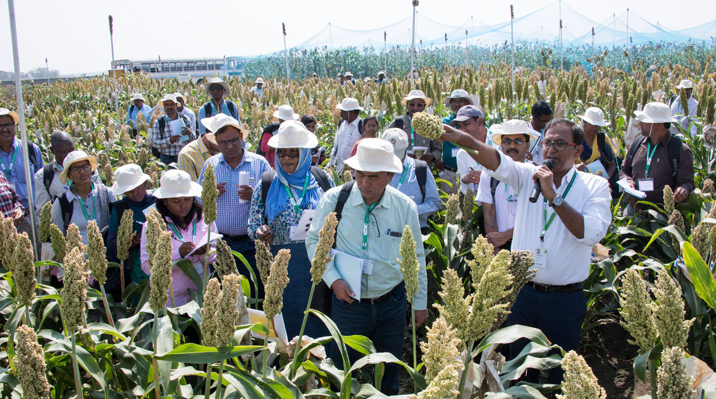 Dr A Ashok Kumar, Principal Scientist-Plant Breeding, ICRISAT, (front row, extreme right) shows participants materials they could select from for further research and commercialization. Photo: S Punna, ICRISAT
