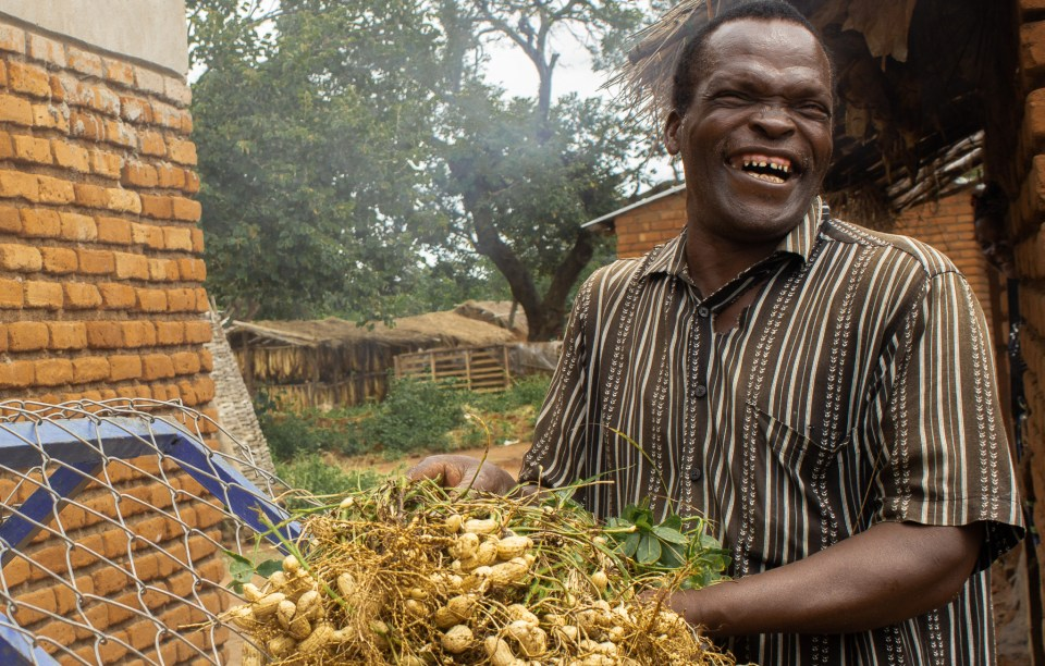 Groundnut farmer Sayilesi Gwizima is excited about the new groundnut varieties.