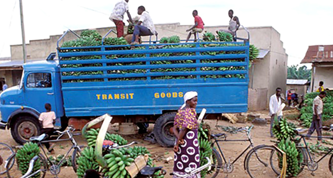 Image from the report. Photo credit: IFPRI