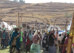 Integrated Watershed Management for adaptation and mitigation to environmental shocks in Ethiopia.