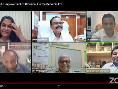 Screenshot from the panel discussion on prospects of genetic improvement of groundnut in post-genomics era. Photo: N Mishra, ICRISAT