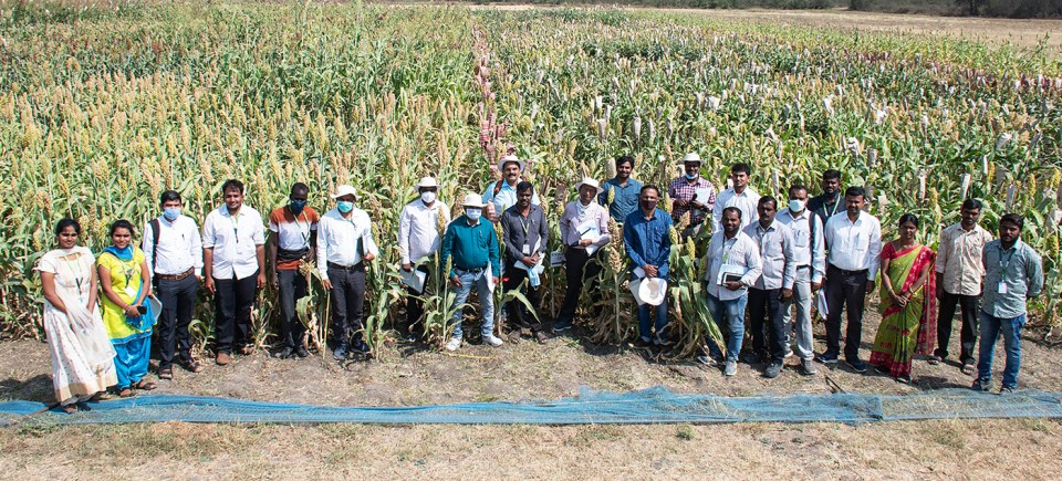 Participants of the sorghum field day on the last day. Photo: PS Rao, ICRISAT