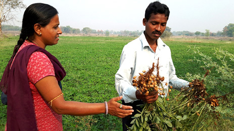 Ms Julie Das, District Coordinating officer and a seed producing farmer discuss the distinct features of Devi variety.