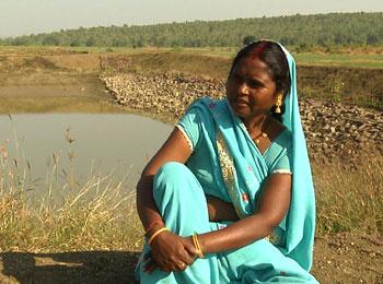Rainwater harvesting pond on Janki Bai's plot. Photo: V Nagasrinivas Reddy