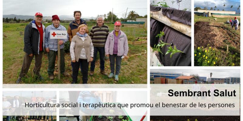 SembrantSalut_CREUROJA_PREMIS C SALUT_18