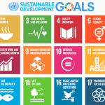 What is the Role of ICT4D in the Sustainable Development Goals?