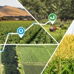 How Can Sensor Technologies and Precision Farming Improve Agriculture?