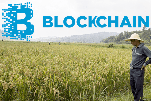 blockchain in agriculutre