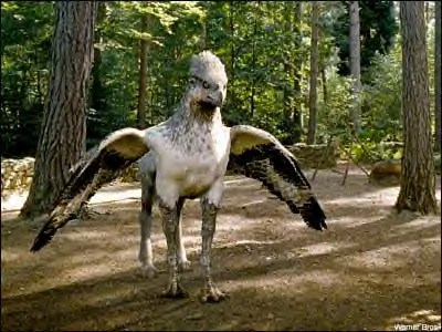 Image result for hippogriff harry potter