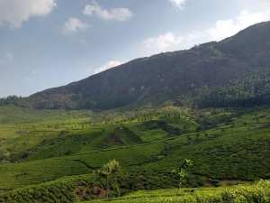 7 Best Hill Station Tour Packages in South India 9