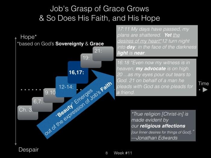 Book of Job, Raz, Week #11.008