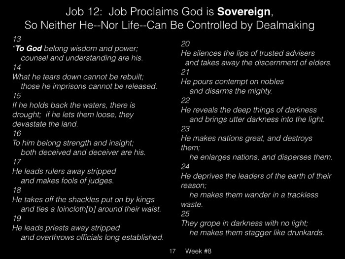 Book of Job, Raz, Week #8.017
