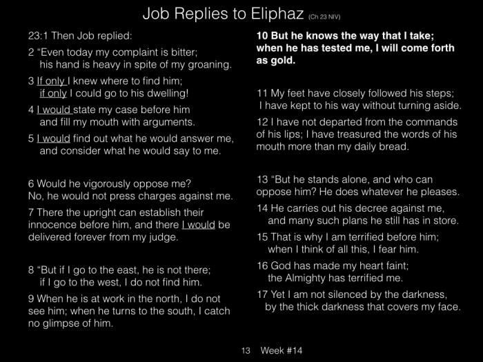 Book of Job, Raz, Week #14.013