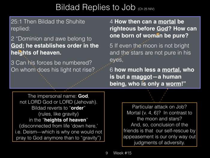 Book of Job, Raz, Week #15.009