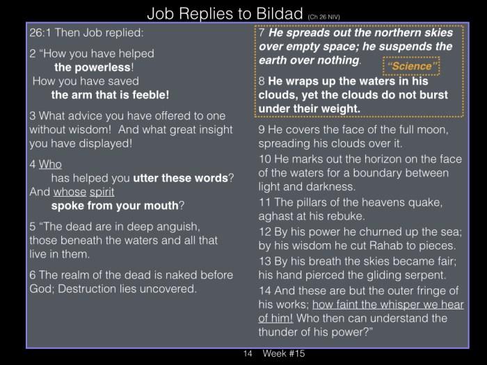 Book of Job, Raz, Week #15.014