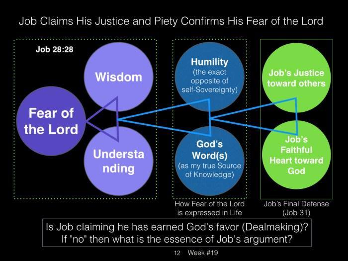Book of Job, Raz, Week #19.012
