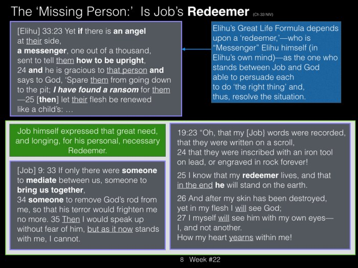 Book of Job, Raz, Week #22.008