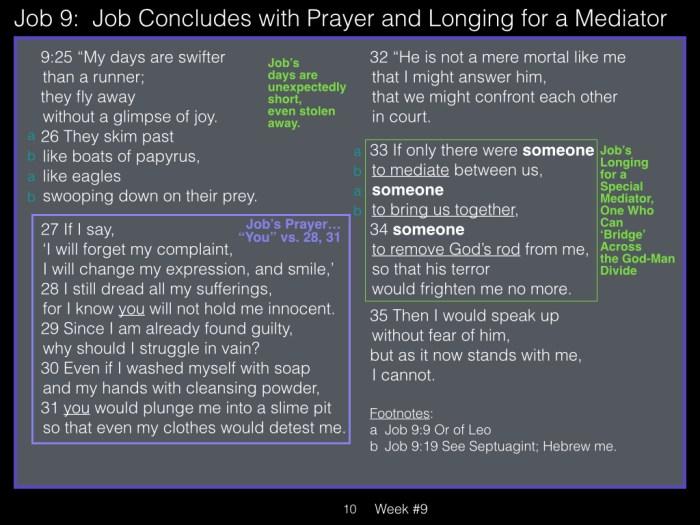 Book of Job, Week #9 LB.010