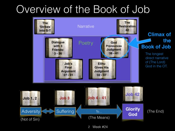 Book of Job, Raz, Week #24.002