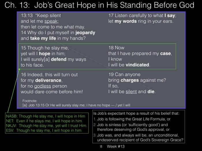 Book of Job, Week #13 LB.008