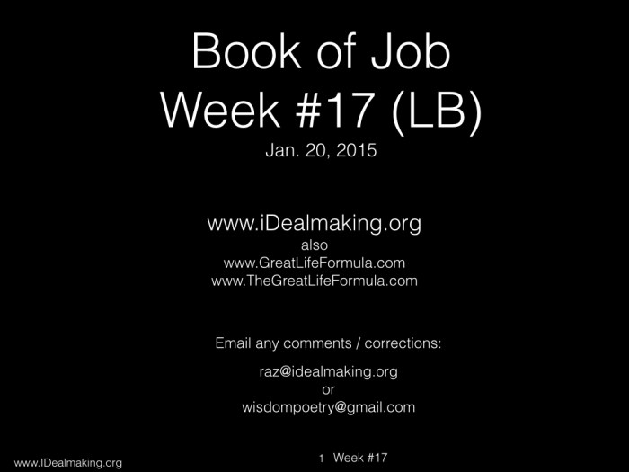 Book of Job, Week #17 LB.001