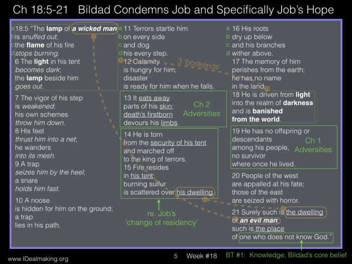 Book of Job, Week #18 LB.005