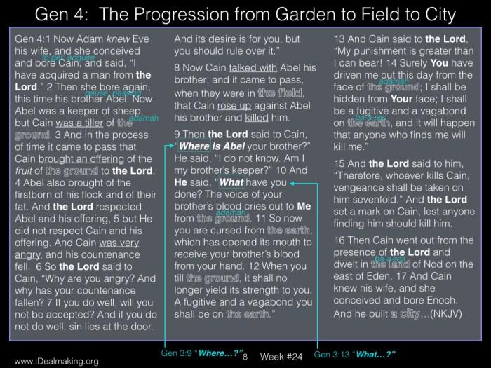 Book of Job, Week #24 LB.008