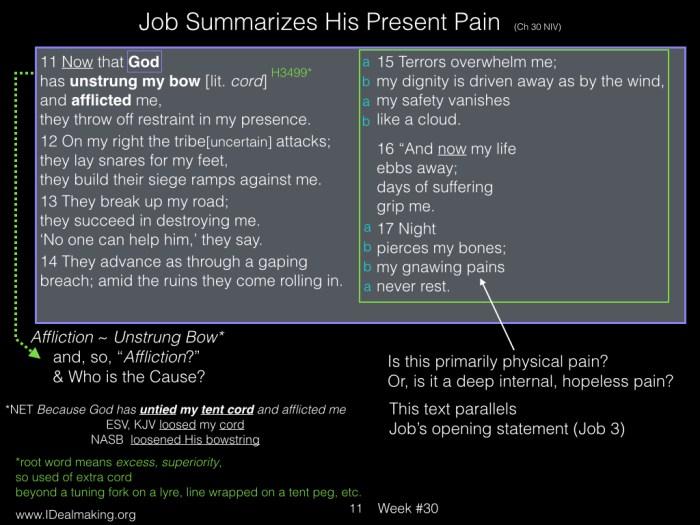 Book of Job, Week #30 LB.011