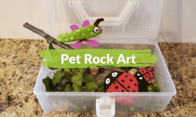 Pet Rock Art