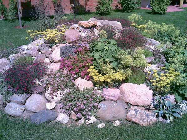 Some Considerations for your Small Rock Garden | Ideas 4 Homes on Small Garden Ideas With Rocks id=67833