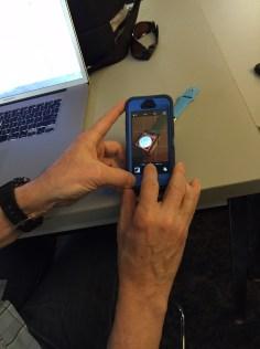 Interest in the Apple Watch