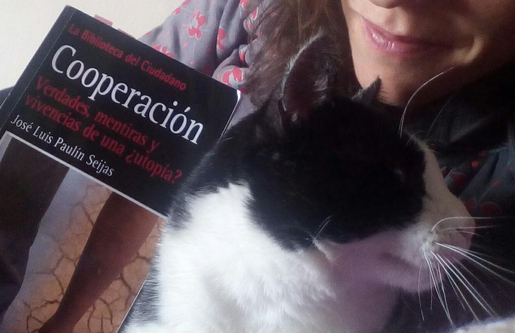 Cooperación, verdades y mentiras de una ¿utopía?, José Luis Paulín Seijas (Ideas on Tour)