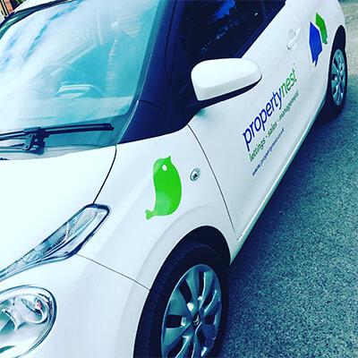 Car White - Ideas That Work