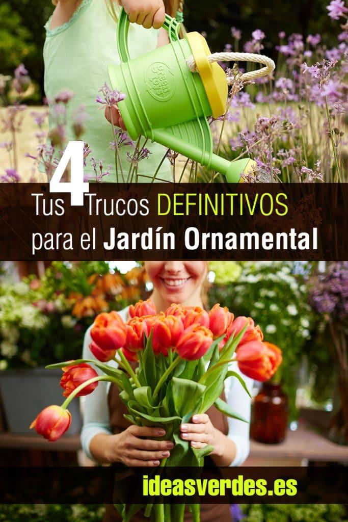 jardin vertical casero c mo hacer jardines verticales paso a materiales ideas y 600338 La entrada Tus 4 Trucos DEFINITIVOS para el Jardín Ornamental aparece  primero en Ideas Verdes.