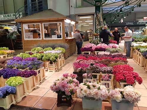 Pavillon des fleurs sur le marché de Rungis