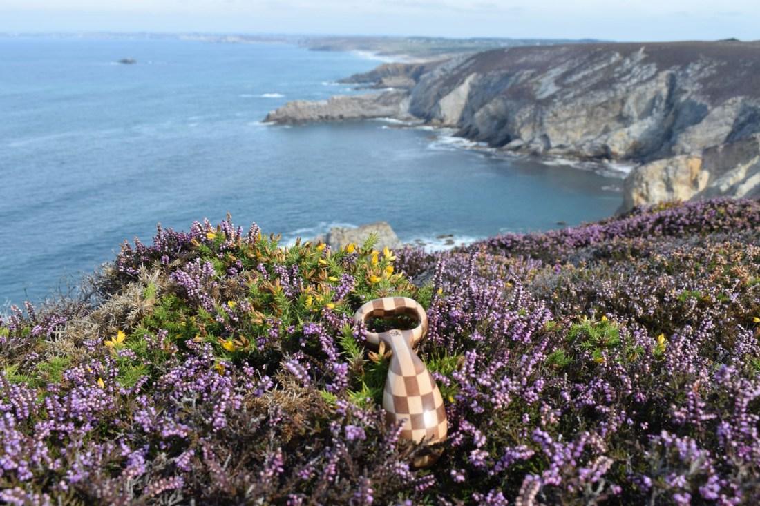 Les orchidées en Bretagne