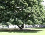 ideenkind | Trinity College