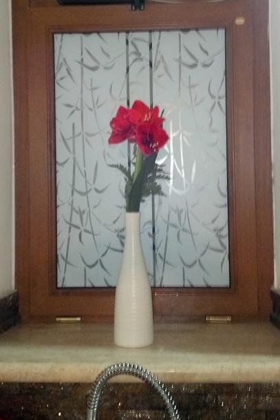 Decorare i vetri di porte e finestre con le pellicole - Pellicole adesive per vetri esterni ...