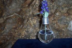 upcycling lampadine fare vasetti