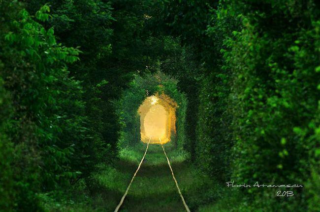 tuneluliubirii5