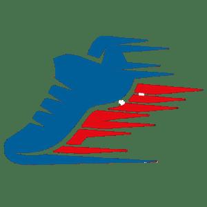 Footjet.com for Online Footwear Sales