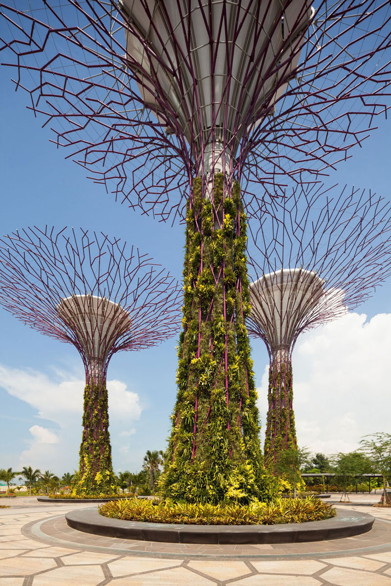 Spectacular Gardens By The Bay In Singapore | iDesignArch ... on Backyard:uuezyx-Hy-8= Landscape Design  id=93433