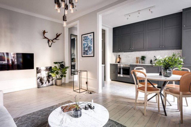 Small Apartment with Well-Planned Layout and Luxurious ...